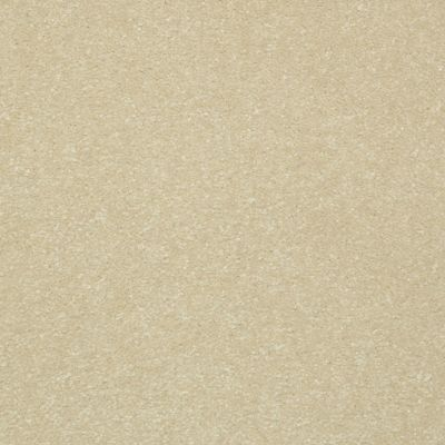 Shaw Floors Passageway II 15 Cream 00101_52S25