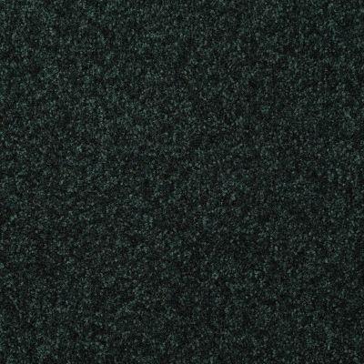 Shaw Floors Foundations Passageway III 12 Emerald 00308_52S26