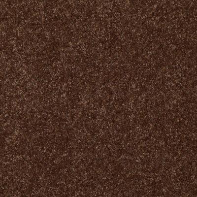 Shaw Floors Foundations Passageway III 12 Mocha Chip 00705_52S26