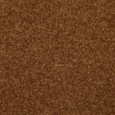 Shaw Floors Foundations Passageway III 15 Camel 00204_52S27