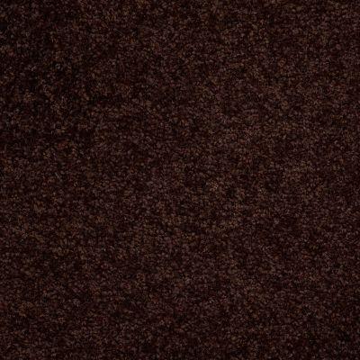 Shaw Floors Town Creek I 12 Dark Roast 00709_52S28