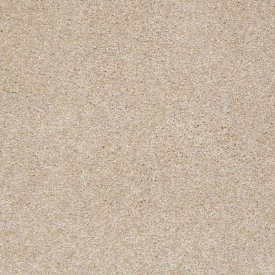 Shaw Floors Town Creek II Fresco 00109_52S30