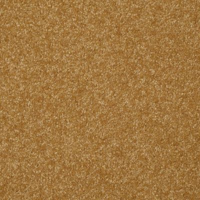 Shaw Floors SFA On Going I 12 Golden Rod 00202_52S34