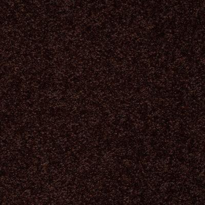 Shaw Floors SFA On Going I 12 Dark Roast 00709_52S34