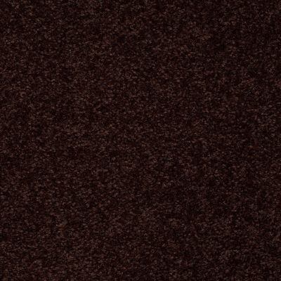 Shaw Floors SFA On Going I 15 Dark Roast 00709_52S35