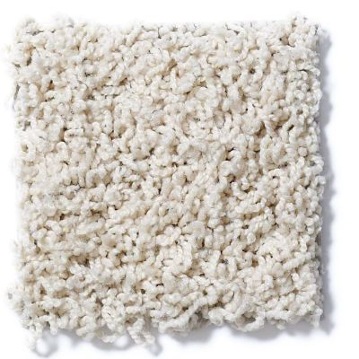 Shaw Floors SFA Complements Silken Sand 00101_52T63