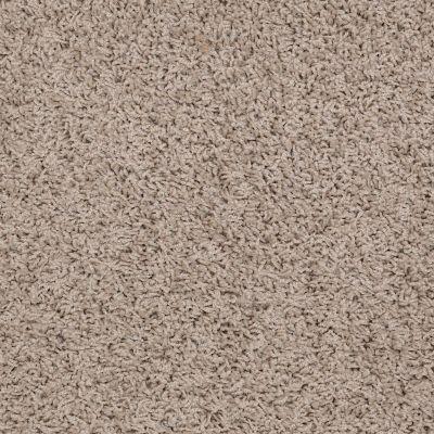 Shaw Floors SFA Complements Birch Bark 00107_52T63