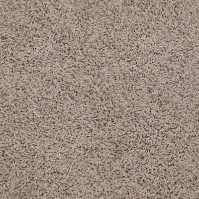 Shaw Floors SFA Complements Lava 00109_52T63