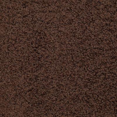 Shaw Floors SFA Complements Dark Fudge 00701_52T63