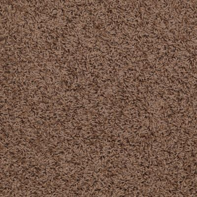Shaw Floors SFA Complements Brown Sugar 00702_52T63