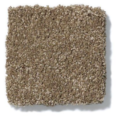 Shaw Floors Anso Colorwall Design Texture Gold Latte 00760_52T72