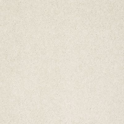 Shaw Floors Anso Colorwall Design Texture Platinum 12′ Cool Breeze 00106_52T73