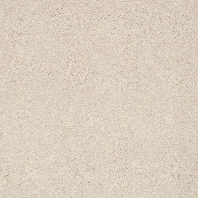 Shaw Floors Anso Colorwall Design Texture Platinum 12′ Dunes 00123_52T73
