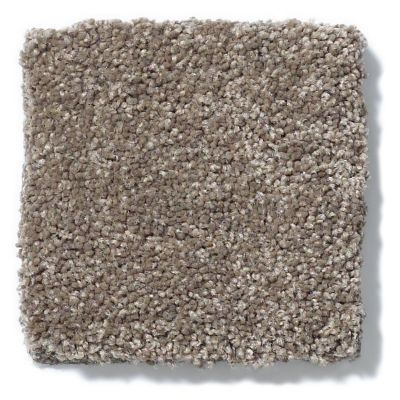 Shaw Floors Anso Colorwall Design Texture Platinum 15′ Iced Coffee 00723_52T74