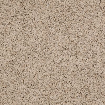 Shaw Floors Guess Work (s) Bleached Straw 00106_52T99