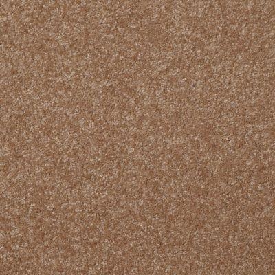 Shaw Floors Shaw Floor Studio Porto Veneri II 15′ Ash Blonde 00701_52U50