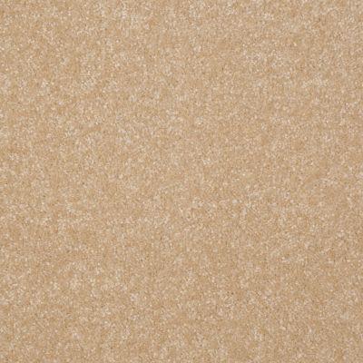 Shaw Floors Shaw Floor Studio Porto Veneri I 15′ Silk 00104_52U55