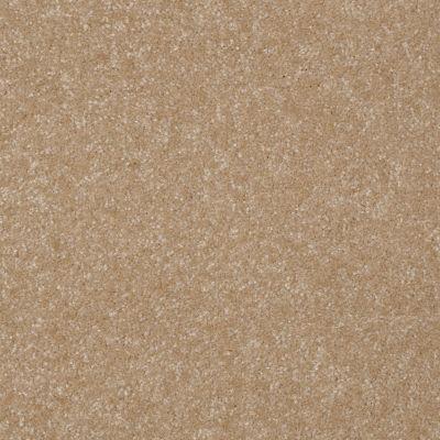 Shaw Floors Shaw Floor Studio Porto Veneri I 15′ Classic Buff 00108_52U55