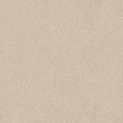 Shaw Floors Shaw Floor Studio Porto Veneri II 12′ Cloud 00102_52U56