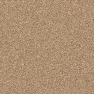 Shaw Floors Shaw Floor Studio Porto Veneri II 12′ Muffin 00106_52U56