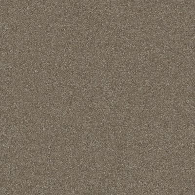Shaw Floors Shaw Floor Studio Porto Veneri II 12′ Field Stone 00111_52U56