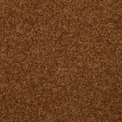 Shaw Floors Shaw Floor Studio Porto Veneri II 12′ Camel 00204_52U56