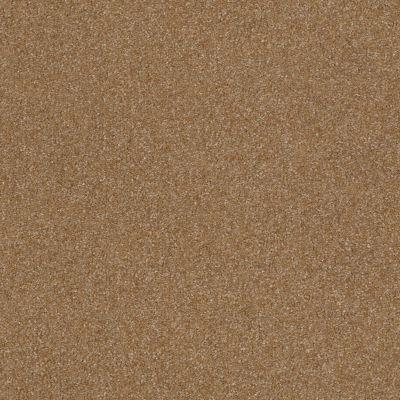 Shaw Floors Shaw Floor Studio Porto Veneri II 12′ Ash Blonde 00701_52U56