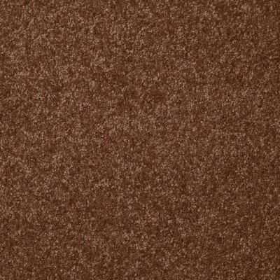 Shaw Floors Shaw Floor Studio Porto Veneri II 12′ Toasty 00710_52U56