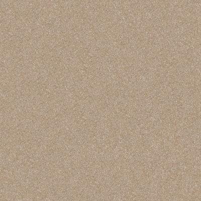 Shaw Floors Shaw Floor Studio Porto Veneri III 12′ Fresco 00109_52U58