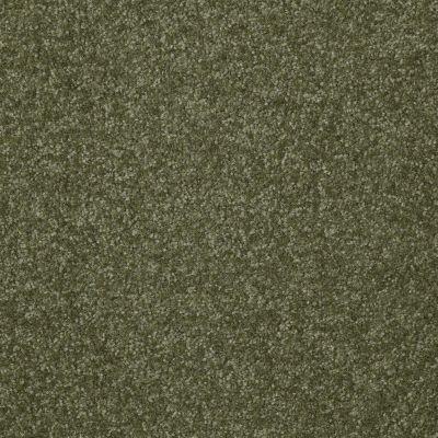 Shaw Floors Shaw Floor Studio Porto Veneri III 12′ Sage Leaf 00302_52U58