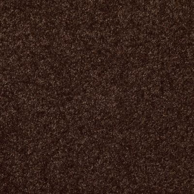 Shaw Floors Shaw Floor Studio Porto Veneri III 15′ Walnut 00706_52U59