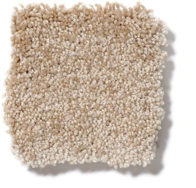 Shaw Floors Town Creek I 15′ Sea Grass 52V12_00700
