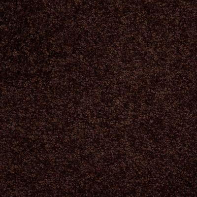 Shaw Floors Town Creek I 15′ Dark Roast 00709_52V12