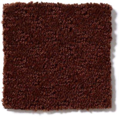 Shaw Floors More Is More Burnt Ember 00601_52V35