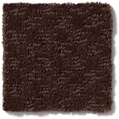 Shaw Floors More Is More Mocha Chip 00705_52V35