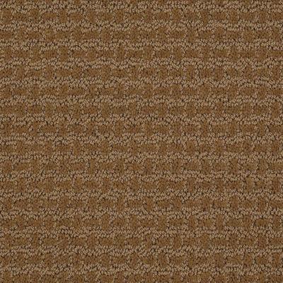 Shaw Floors Ray Of Light Fresh Khaki 00700_52V36