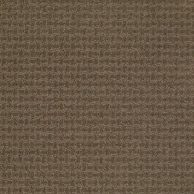 Shaw Floors Ray Of Light Townhouse 00704_52V36