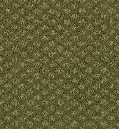 Shaw Floors Padova Organic Leaf 00300_52V37