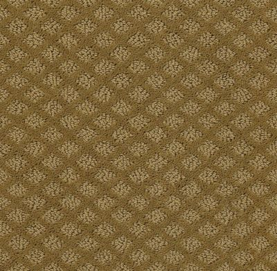 Shaw Floors Padova Fresh Khaki 00700_52V37