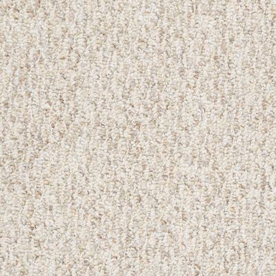 Shaw Floors Shaw Floor Studio Best Friend 15′ Bran Flakes 00701_52V60