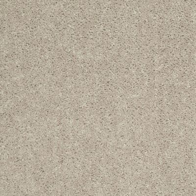 Shaw Floors Fielder's Choice 12′ Misty Taupe 00105_52Y70