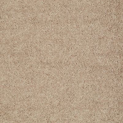 Shaw Floors Fielder's Choice 12′ Soapstone 00107_52Y70