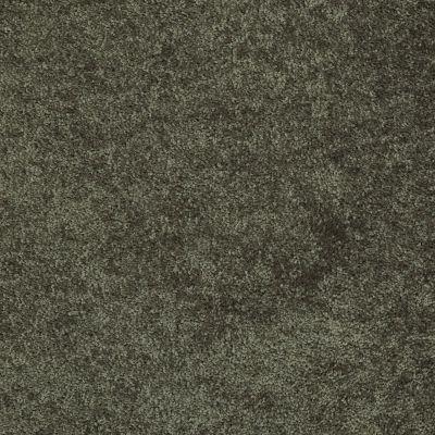 Shaw Floors Fielder's Choice 12′ Hedges 00301_52Y70