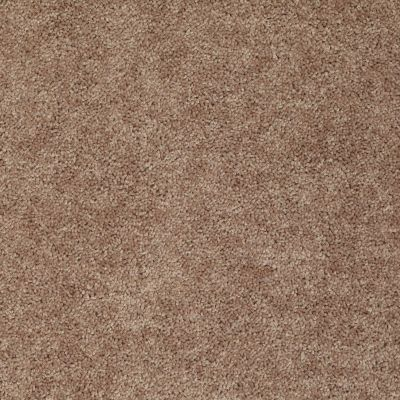 Shaw Floors Fielder's Choice 12′ Rio Grande 00701_52Y70