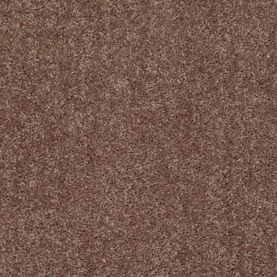 Shaw Floors Fielder's Choice 12′ Landslide 00702_52Y70