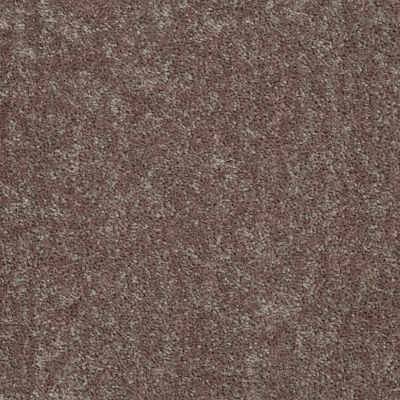 Shaw Floors Fielder's Choice 12′ Shale 00703_52Y70