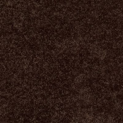 Shaw Floors Fielder's Choice 12′ Walnut 00705_52Y70
