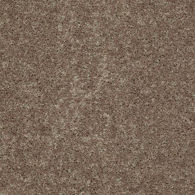 Shaw Floors Full Court 15′ Hearth Stone 00700_52Y82