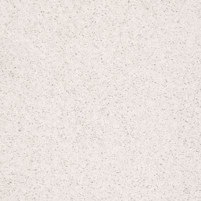 Shaw Floors Fielder's Choice 15′ Halo 00100_52Y92