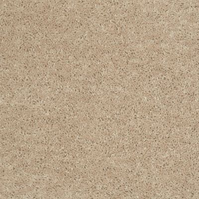Shaw Floors Fielder's Choice 15′ Adobe 00103_52Y92